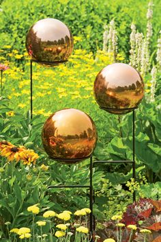 Copper Stainless Steel Gazing Globe