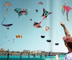 Kite-flying is an important ingredient of celebrating #MakarSankranti in #Gujarat and #Rajasthan. #CelebratingIndia