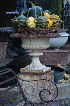 urn with squash and grapevines
