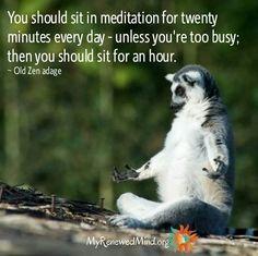20 minutes everyday