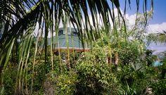 Emerald Shores Estate - View of Main House