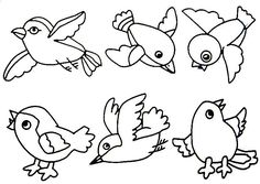 kookoo birds coloring pages