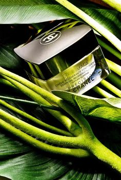 products beauty still life chanel vogue magazine