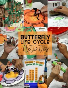 Find hands-on butterfly life cycle activities, butterfly science labs, and free printables to incorporate reading skills and get kids writing about science!