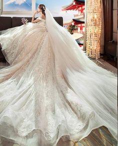 21 Fairytale Wedding Dresses Of Alexander Grassner Große 46 Your Dreams - weddingtopia Princess Wedding Dresses, Dream Wedding Dresses, Bridal Dresses, Wedding Gowns, Lace Wedding, Weeding Dress, Beautiful Gowns, Dream Dress, Pretty Dresses