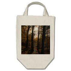 Forest sun bag. #autumn #fall #woods #forest #sun #nature