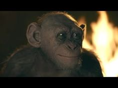 Bad Ape in War for the Planet of the Apes could very easily have turned into an annoying character but Steve Zahn does a fantastic performance as an isolated Chimp. Dawn Of The Planet, Planet Of The Apes, Cute Little Baby, Little Babies, Crazy Fans, Animation, Latest Movies, Best Actor, Film