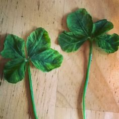 "@carylshawver's photo: ""Two four leaf clover"""