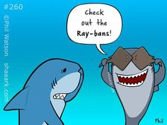 Do you know that rays are the closest relatives of sharks?