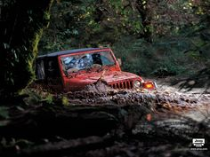 Image result for royal land rovers