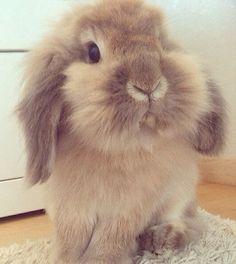 Aww so cute ❤️