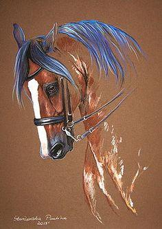 Dressage horse by Paulina Stasikowska