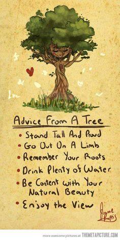 Live life like a tree