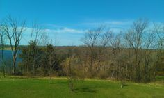 View from my office. Bare trees