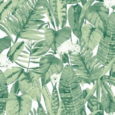 Muted Jungle Removable Wallpaper, Jungle Green