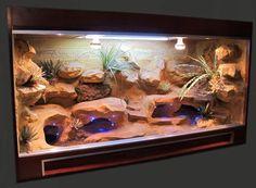 make my own gecko habitat. Bearded Dragon Vivarium, Bearded Dragon Enclosure, Bearded Dragon Terrarium, Bearded Dragon Cage, Bearded Dragon Habitat, Dragon Pet, Leopard Gecko Habitat, Leopard Gecko Setup, Lizard Tank