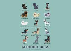 dogs-of-the-world-lili-chin-14