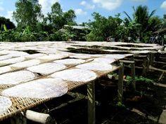 http://www.informatik.uni-bremen.de/~net/images/vietnam/mekong-delta/dscn3618.jpg