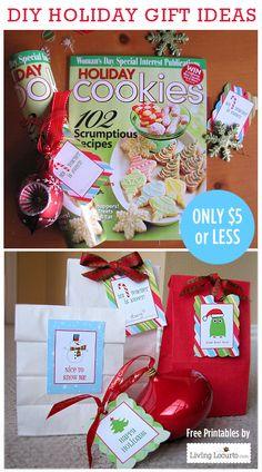 DIY Christmas Gift Idea with Free printable Tags. Livinglocurto.com