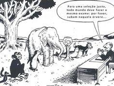 Justiça escolar ; avaliação