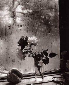 Views from the windows of the atelier of Czech photographer Josef Sudek /Josefa Sudka (1896 - 1976)