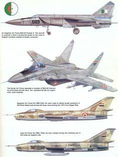 Algerian Air Force MiG-25 / Syrian Air Force MiG-29 / Egyptian and Iraqi Air Force Su-7