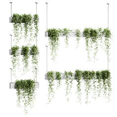 Ivy in hanging flower pots - 5 models Collage Architecture, Architecture Graphics, Architecture Visualization, Architecture Drawings, Landscape Architecture, Landscape Design, Bühnen Design, Modern Design, Tree Photoshop