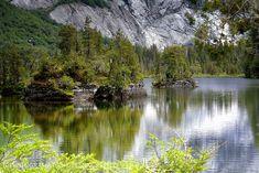 Reflejos en Lago Quetrus - Parque Tagua Tagua (Patagonia - Chile)