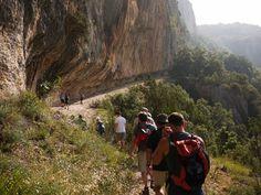 Découvrez notre gamme de randonnées et sorties thématiques. Ardèche Randonnées vous propose de découvrir toute l'année les milles secrets de l'Ardèche.