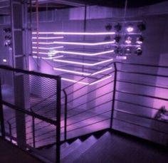 aesthetic, dark, lights, purple