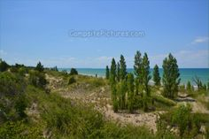 The Pinery, The Beach, Camping in Ontario Parks Ontario Parks, Beach Camping, Mountains, Nature, Summer, Travel, Naturaleza, Summer Time, Viajes