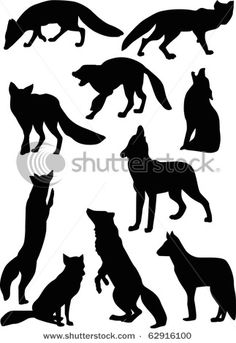 foxes and wolves silhouettes
