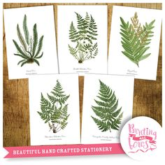 Botanical Fern Prints - A4 (297 x 210mm) Reproduction Art Wall Hangings set of 5. Professionally printed on heavy weight 300gsm, they will look stunning mounted and framed. | eBay!