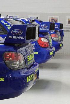 A flock of Subies - Subaru Impreza WRC Rally cars Subaru Rally, Subaru Impreza Wrc, Rally Car, Tuner Cars, Jdm Cars, Rallye Wrc, Japan Cars, Nissan Skyline, Courses