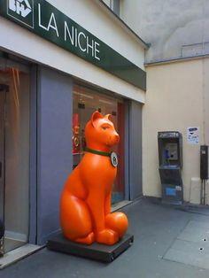 new-cat-shop-in-paris