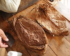 Cured tobacco leafs