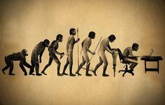 Human evolution, the reality.