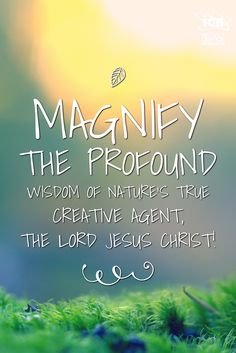 Magnify the profound wisdom of nature's true creative Agent, the Lord Jesus Christ! http://www.icr.org/article/9860