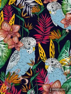 Bright, colourful, vibrant pattern design ideas and inspiration. Love this blue budgie and tropical flower print by Walter Spina. The magenta, green, yellow and orange flowers make it.