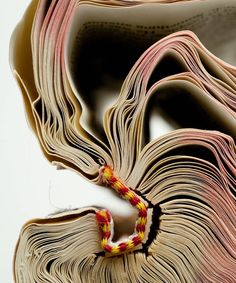 "birdcagewalk: ""elemenop:old books by Mark Douglas "" Vogue Photography, Abstract Photography, Old Books, Sweet Nothings, Altered Books, Photo Art, Book Art, Digital Prints, Artsy"