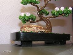 Бонсай топиарий ёлка Мастер-класс Бонсай Поставка из гипса фото 1