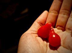 #Semillas #Criollas #Naturales #Campesinas #Libres #Nutritivas #Sanas #TomatePeraRojo #TomatePera #Tomate