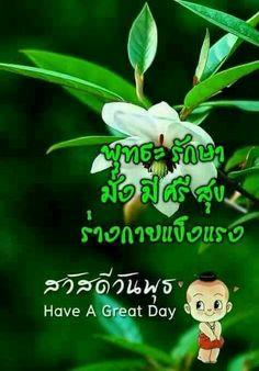 Die 480 Besten Bilder Von Gruß Thai In 2020 Blumen Anbauen