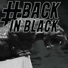 from Carolina Panthers Another day closer to gameday. Spread the word #PantherNation. Wear black and get loud on Sunday. #BackInBlack