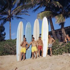 Sunset Beach, Hawaii - 1966 - Greg Noll Surf Team - photo by LeRoy Grannis Surfs Up, Surf Mode, Vintage Surfing, Santa Barbara Museum, Beach Pink, Beach Bum, Where Is Bora Bora, Vintage California, California Surf