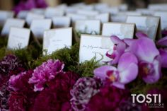 escort card table... place in a tray of grass (or fake grass).... super cute