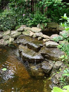 What I want in the backyard: Add a pond to the garden and get the benefit of sound, movement, wildlife and serenity!