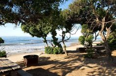 Carpinteria State Beach-Fun Places California-Things To Do in California....This was my families first favorite camping spots. It is near Santa Barbara.
