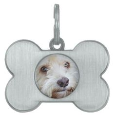 Pino the cockapoo rescue in Mexico is star of this cute bone doggie tag  $19.95