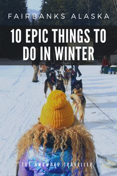 Heading to Alaska? Here are 10 EPIC things to do in Fairbanks in winter! Ideas for couples, families, and even solo travelers! Alaska Travel, Usa Travel, Alaska Trip, Solo Travel, Winter Destinations, Travel Destinations, Travel Hack, Alaska Winter, Snowmobile Tours